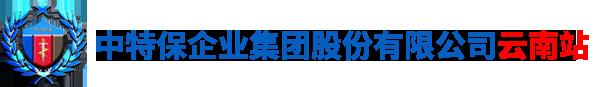 云南省昆明中特保安保服务公司